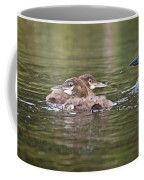 Baby Loons And Mom Coffee Mug