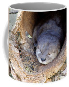 Baby Otter Coffee Mug