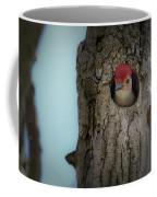 Baby Red Bellied Woodpecker Coffee Mug