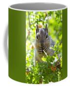 Baby Rock Squirrel  Coffee Mug