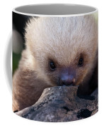 Baby Sloth 2 Coffee Mug by Heiko Koehrer-Wagner