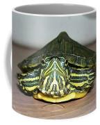 Baby Turtle Straight On Coffee Mug