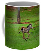Baby Zebra Running Coffee Mug