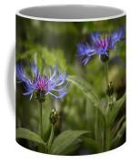 Bachelor Buttons - Flowers Coffee Mug
