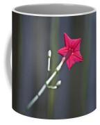 Back Of Flower Coffee Mug