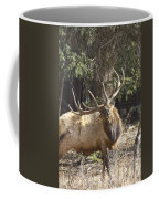Back Scratcher Coffee Mug