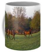 Back To The Barn Coffee Mug