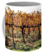 Backlit Autumn Vineyard Coffee Mug