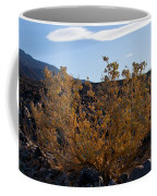 Backlit Desert Foliage Coffee Mug