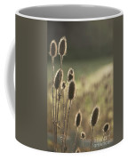 Backlit Teasel Coffee Mug