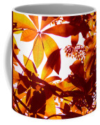 Backlit Tree Leaves 2 Coffee Mug