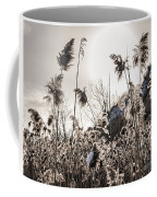 Backlit Winter Reeds Coffee Mug