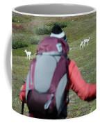 Backpacker Watches Dall Sheep Coffee Mug