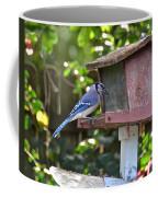 Backyard Bird Feeder Coffee Mug