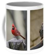 Backyard Bird Series Coffee Mug