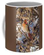 Backyard Birds Female Nothern Cardinal Coffee Mug