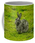 Backyard Bunny In Black White And Green Coffee Mug