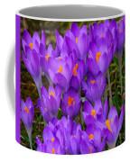 Backyard Crocus Coffee Mug