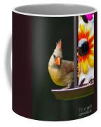 Backyard Female Cardinal Coffee Mug