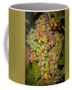 Backyard Garden Series -hidden Grape Cluster Coffee Mug