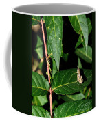 Backyard Hopper Coffee Mug