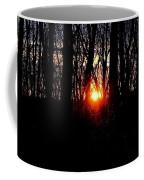 Backyard Sunset 2 Coffee Mug