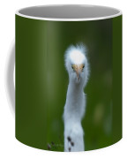 Bad Feather Day Coffee Mug