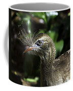 Bad Feather Day Coffee Mug
