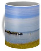 Bailey's Mistake Panorama Coffee Mug