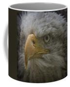 Bald Eagle 26 Coffee Mug