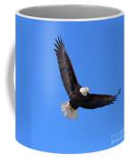 Bald Eagle 3773 Coffee Mug