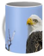 Bald Eagle Close Up Coffee Mug
