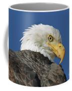 Bald Eagle Closeup Coffee Mug