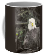Bald Eagle Coffee Mug by Dawn Gari