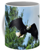 Bald Eagle Feeding 2 Coffee Mug