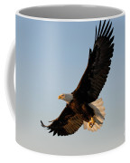 Bald Eagle Flying With Fish In Its Talons Coffee Mug