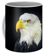 Bald Eagle Hailaeetus Leucocephalus Wildlife Rescue Coffee Mug