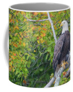 Bald Eagle In Fall Colors Animals Coffee Mug