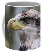 Bald Eagle - Juvenile - Profile Coffee Mug