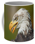 Bald Eagle... Coffee Mug