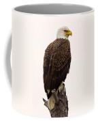 Bald Eagle On A Snag Coffee Mug