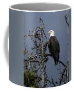 Bald Eagle On Watch Coffee Mug