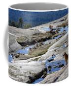 Bald Rock Lookout Coffee Mug