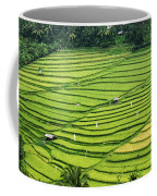 Bali Indonesia Rice Fields Coffee Mug