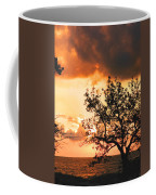 Baltic Sunset In The South Of Sweden Coffee Mug