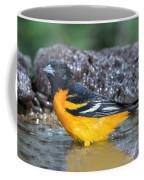 Baltimore Oriole Icterus Galbula Bathing Coffee Mug