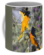 Baltimore Orioles Coffee Mug