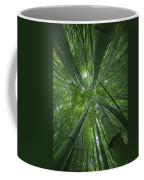 Bamboo Forest 1 Coffee Mug