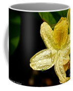 Banana Azalea  Coffee Mug