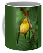 Banana Curls Coffee Mug